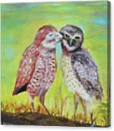 Field Owls  Canvas Print