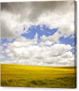Field With Dramatic Sky. Canvas Print