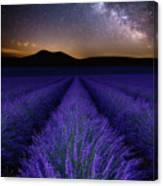 Fields Of Eden Canvas Print
