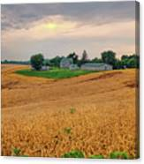 Fields Of Gold, Illinois Canvas Print