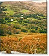 Fields Of Ireland Canvas Print