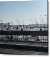 Fields Of Snow Canvas Print
