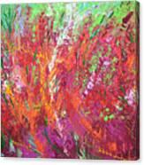 Fiery Meadow Canvas Print