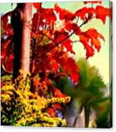 Fiery Red Autumn Canvas Print