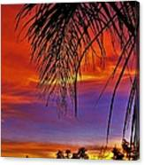 Fiery Sunset With Palm Tree Canvas Print