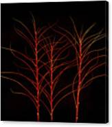 Fiery Trees Canvas Print