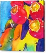 Fiesta De Fruta Canvas Print