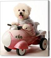 Fifi The Bichon Frise And Her Rocket Car Canvas Print