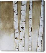 Fifteen Birch Trees Canvas Print