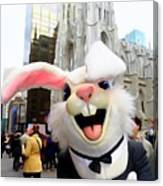 Fifth Ave Easter Bunny Canvas Print