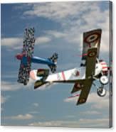 Fighting Colours 2 - Fokker D. Vll - Nieuport Canvas Print