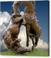 Fighting Stallions Canvas Print