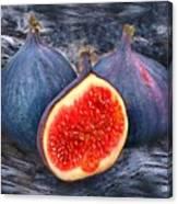 Figs 3 Canvas Print