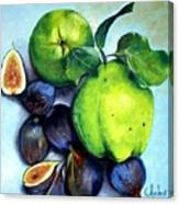 Figs And Quinces Canvas Print