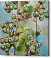 Figs3 Canvas Print