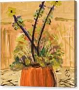 Filled Terra Cotta Vase Canvas Print