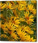 Filled With Sunflowers Vertical Canvas Print