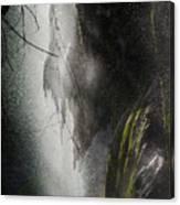 Filtered Light Canvas Print