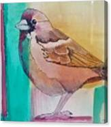 Finch Fun Canvas Print