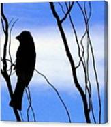 Finch Silhouette 2 Canvas Print