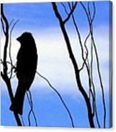 Finch Silhouette 2 Canvas Print