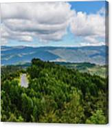 Find Your Road Canvas Print