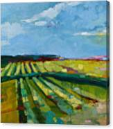 Fine Fields Canvas Print