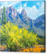 Finger Rock Tucson Az Canvas Print