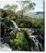 Fintry Loupe Canvas Print