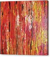 Fire - 1 Canvas Print
