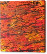 Fire 2 Canvas Print