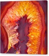 Fire Agate Canvas Print