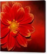 Fire Dahlia By Kaye Menner Canvas Print