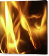 Fire  Feuer Canvas Print