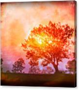 Fire In The Trees Canvas Print