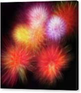 Fire Mums Floral - Fireworks Collage Canvas Print