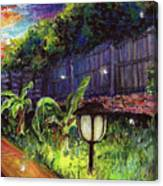Fireflies In Woodfin Canvas Print