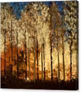 Firestorm Canvas Print
