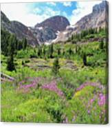 Fireweed Frenzy Canvas Print