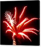 Firework Hibiscus Canvas Print