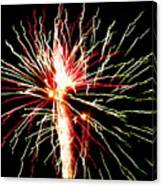 Firework Pink And Green Streaks Canvas Print