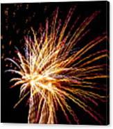 Firework Symphony Canvas Print