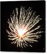 Firework White Fluff Canvas Print