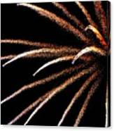 Fireworks 103 Canvas Print