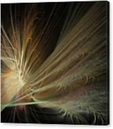 Fireworks Display Canvas Print
