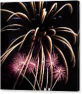 Fireworks Festivities Canvas Print