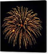 Fireworks - Gold Dust Canvas Print