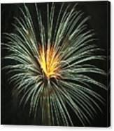 Fireworks Green Flower  Canvas Print