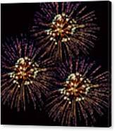 Fireworks - Purple Power Canvas Print