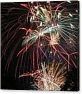 Fireworks6487 Canvas Print